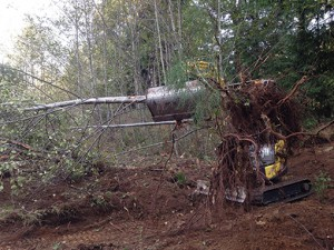 Dirty Digger Contracting Victoria Duncan BC Excavating and Land Clearing Services