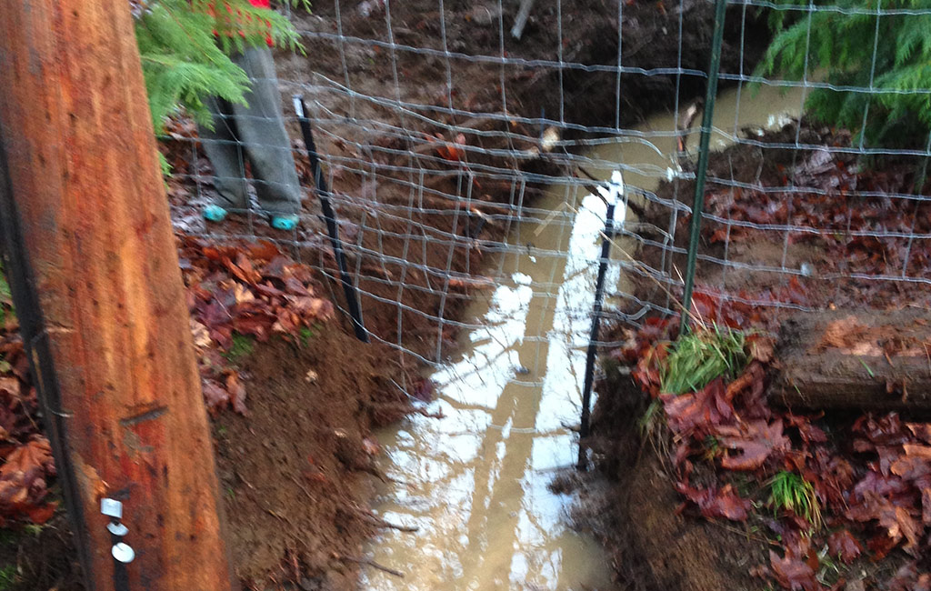 Dirty Digger Contracting Victoria Duncan BC Ditch Services