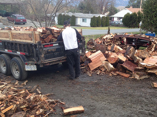 Dirty Digger Excavating Services - Firewood For Sale True Full Cords